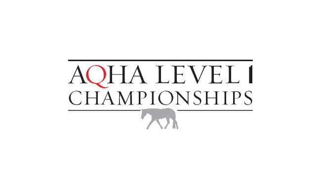 American Quarter Horse Association Level One Championship Limo Service