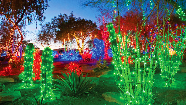 Holiday Limo Service to Ethel M Chocolates Holiday Cactus Garden